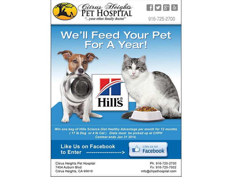 Custom Email Ad